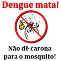 Combate à dengue!